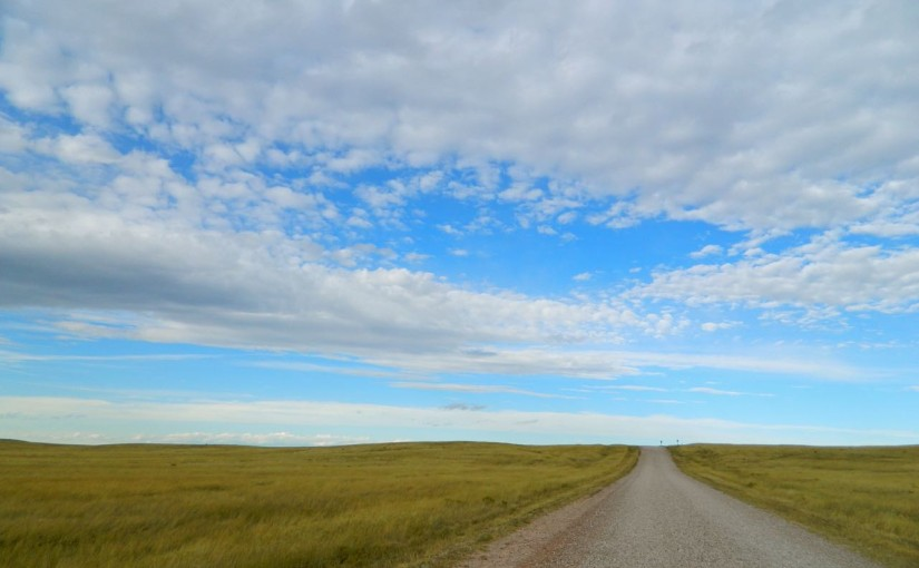 gravel road through the grasslands